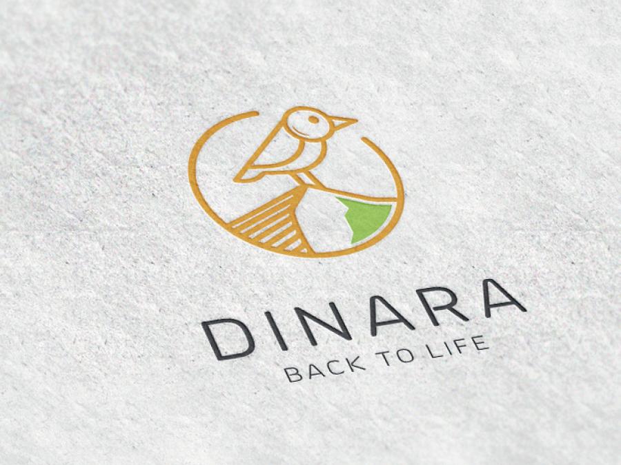 Vizual_Dinara